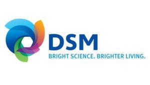 DSM_logo_SAM_seo